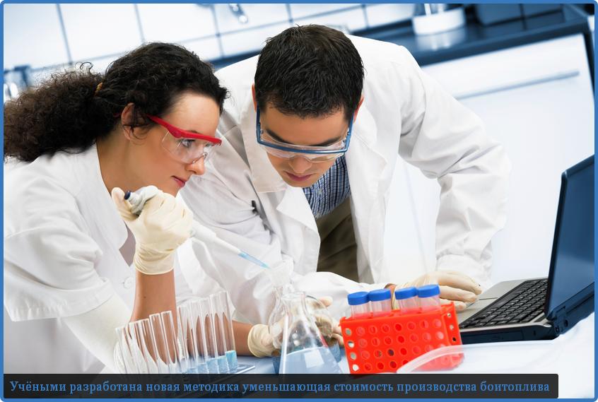 разработана новая технология производства биотоплива
